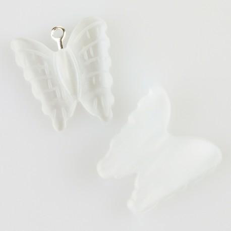 Mariposa en ojo de gato blanco