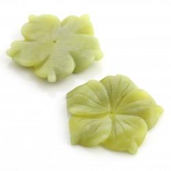 Flor de jade limón